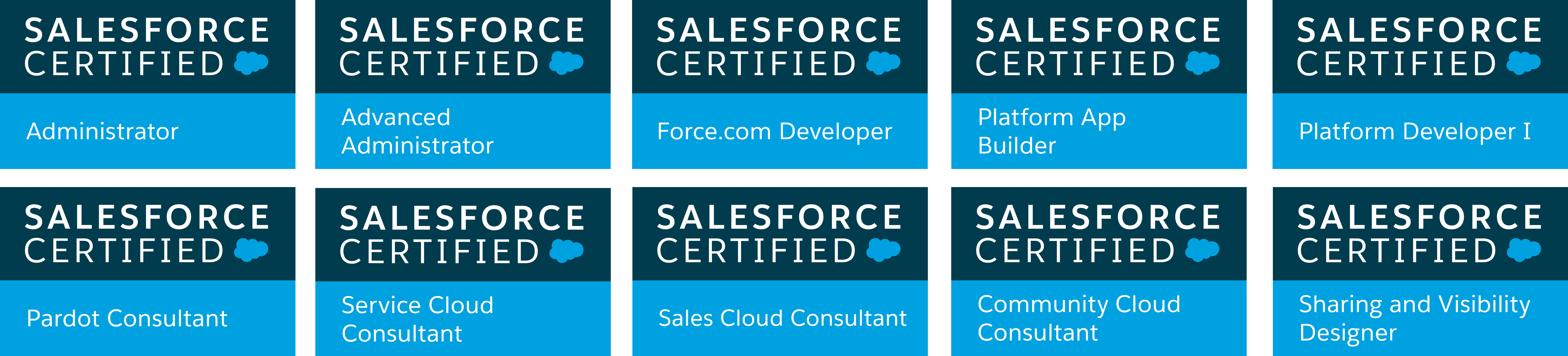 Salesforce certification logosg baditri Choice Image
