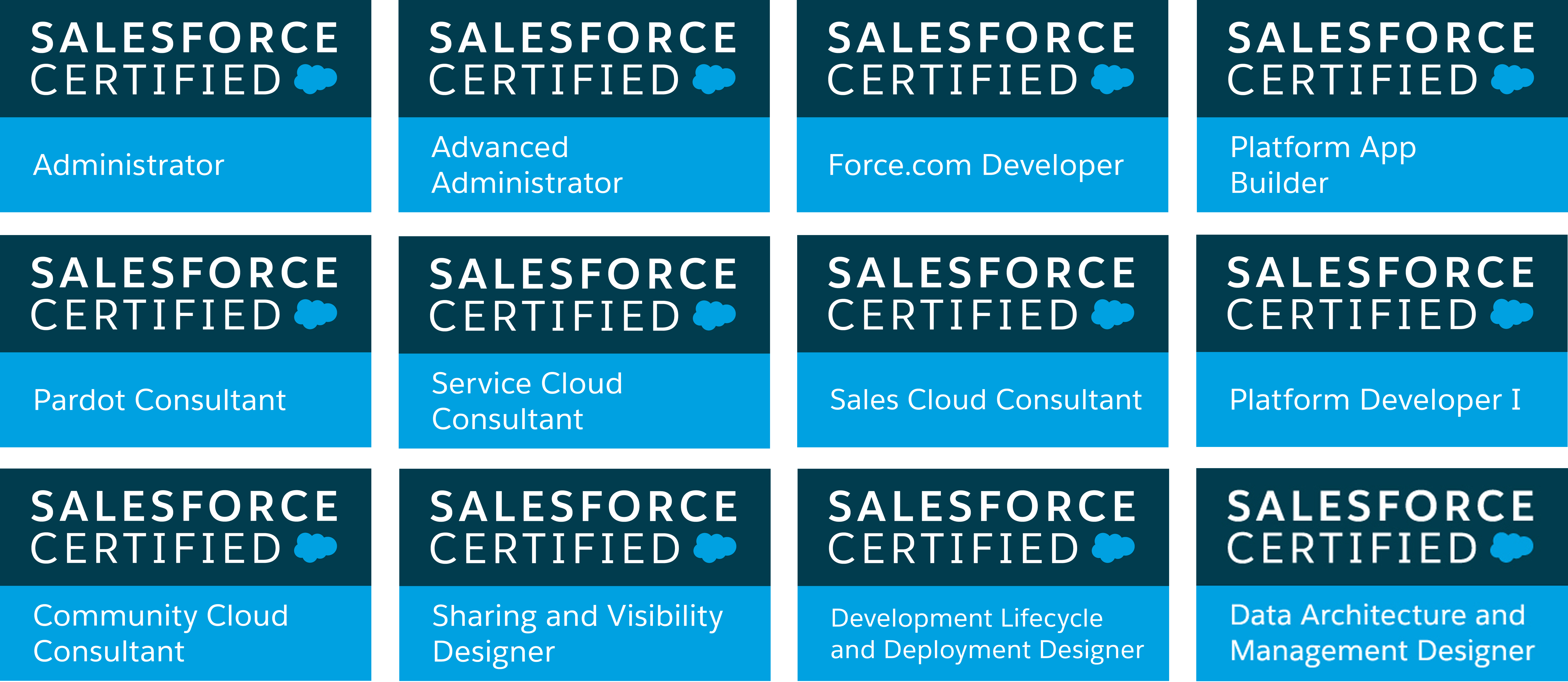 Salesforce certification logos2g baditri Choice Image